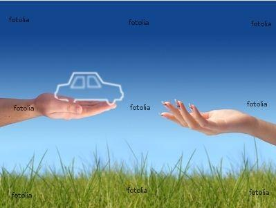 Bild mit Wasserzeichen - (software, Wasserzeichen, Watermark Image)