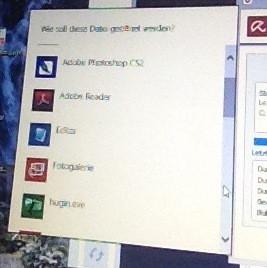 """""""Datei öffnen mit..."""" Fenster - (Datei, Virus, windows 8.1)"""
