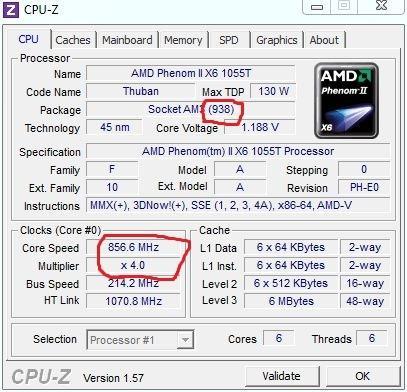 - (Computer, Hardware, Programm)