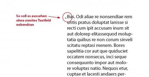 - (Adobe, InDesign, Textfeld)